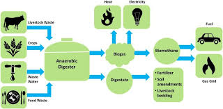 ADVANTAGES AND LIMITATIONS OF BIOGAS TECHNOLOGIES