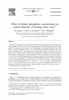 Effect of dietary phosphorus concentration on estrous behavior of lactating dairy cows