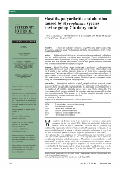 Mastitis, polyarthritis and abortion caused by Mycoplasma species bovine group 7 in dairy cattle