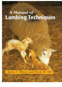 كتاب Manual of Lambing Techniques pdf