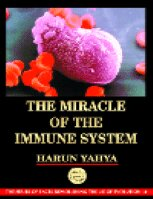 THE MIRACLE OF THE IMMUNE SYSTEM