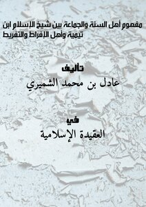 The concept of the Sunnis and the group between Shaykh al-Islam Ibn Taymiyah and the people of excessiveness